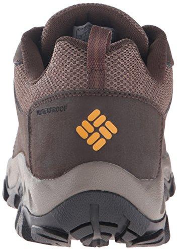 Columbia Mens Newton Ridge Plus Low Waterproof Hiking Shoe Cordovan, Squash
