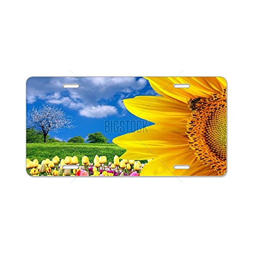 cafepress-beauty-spring-nature-aluminum-license-plate-targa-in-alluminio-anteriore-targa-vanity-tag