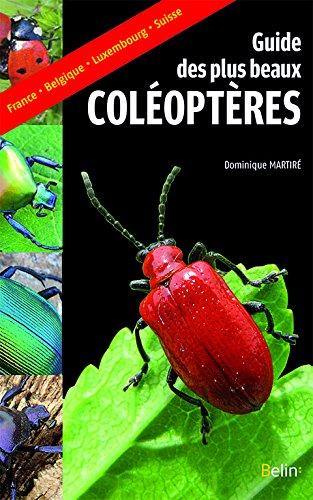 guide-des-plus-beaux-coleopteres
