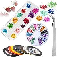 Flores Secas para Uñas,Mwoot Kit de Diseño de Arte de Uñas con 12 Colores de Flores Secas Naturales con 10 Cintas de Línea de Uñas y 1 Caja Pedrería de Uñas Pinza para Mujeres Nail Art Work Artesanía