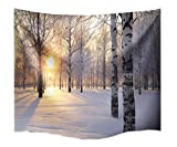 A.Monamour Birke Winter Weißen Schnee Wald Sonnenschein Landschaft Fotodruck Stoff Wandteppich Wanddekor Für Schlafzimmer Schlafsäle