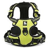 Bont keine Pull Hundegeschirr Pet Safe Control Easy Soft Walking Outdoor 3m Reflektierende Pet Weste für kleine bis große Hunde