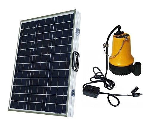 Eco-Worthy Pompe à eau et panneau solaire, 100 W 120 W 160 W, DC 12 V 24 V