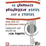 65 Gradually Progressive Pieces: and 6 Studies from OP. 241