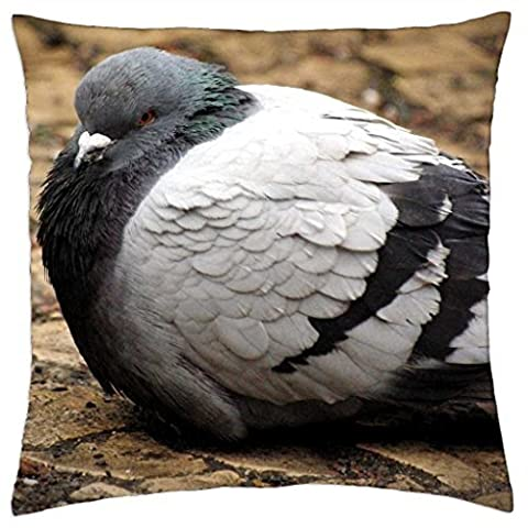 Fat Pigeon - Throw Pillow Cover Case (18