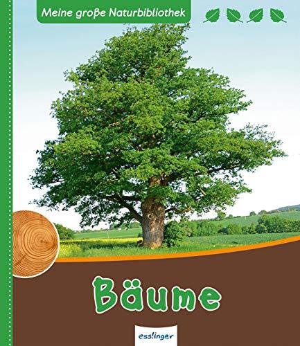 Bäume (Meine große Naturbibliothek) -