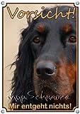 Hundeschild Gordon Setter - Metallschild in Fotoqualität - TOP TIPP, DIN A5