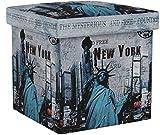 Relaxdays 10019050 Tabouret pliant coffre de rangement pliable banc de stockage avec couvercle amovible 38 x 38 x 38 cm pouf en similicuir repose-pieds table appoint motifs tendances New York,Multicolore