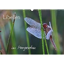 Libellen im Morgentau (Wandkalender 2017 DIN A3 quer): Nebelmorgen bei Libellen (Geburtstagskalender, 14 Seiten ) (CALVENDO Tiere)