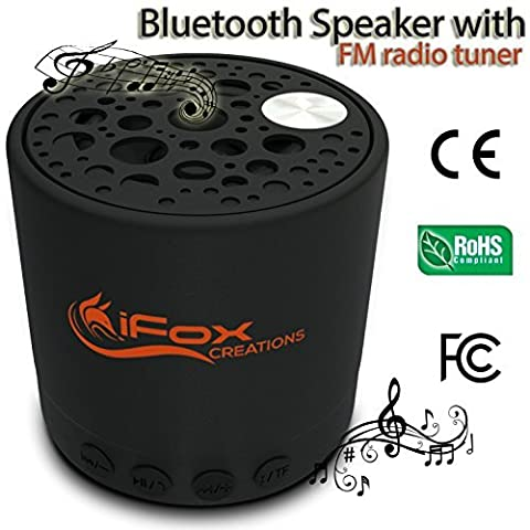 iFox - iF010 Bluetooth Portable Speaker with FM Radio and