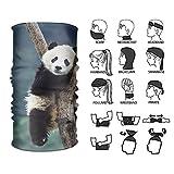 Wfispiy Fascia per Capelli Panda Copricapo Multifunzionale per Esterni 16 Modi per Indossare la Tua Sciarpa Magica per Cappelli