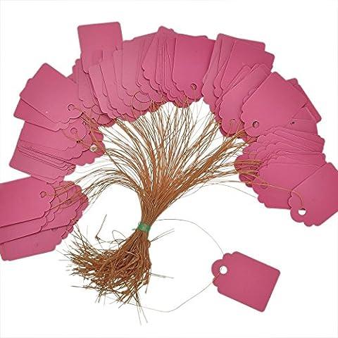 Fengge Environ. 100pcs Ligne à bande imperméable à l'eau étiquette de jardin étiquette plante étiquette suspendue (Rose)