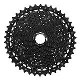 SunRace MS8Cassette für Fahrrad, Schwarz, 11V/11–46T