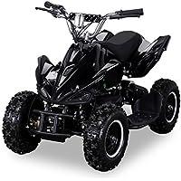 Actionbikes Motors Mini Elektro Kinder Racer 800 Watt ATV Pocket Quad Kinderquad Kinderfahrzeug… (Schwarz)
