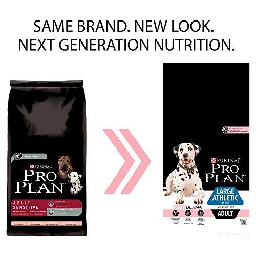 Pro Plan 12294770