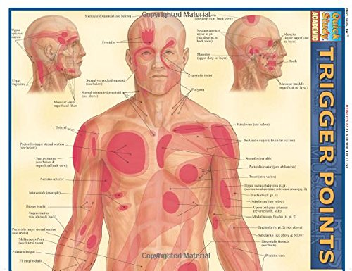 Trigger Points: Reference Guide (Quickstudy: Academic)