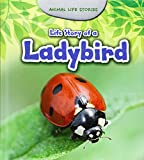 Life Story of a Ladybird (Animal Life Stories)
