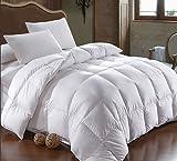 Bettdecke mit Hohlfaser von 400g/m2, daunenweich, für Bett bis 200cm Länge Bett mit 105 cm Breite (180 x 220 cm) weiß