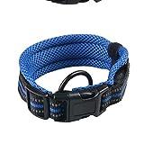 Kf Hundehalsband, Sandwich-Mesh, Aufladung, Glühen, Halsband, Atmungsaktiv, Hundetraktionshalsband, Tierbedarf (Farbe : Blau, größe : L)