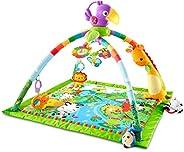 Fisher-Price DFP08 Babylekmatta, 1 st, Färgglatt