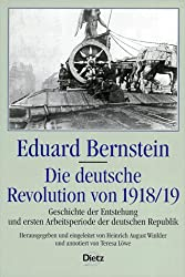 Die deutsche Revolution 1918/19: Geschichte der Entstehung und ersten Arbeitsperiode der deutschen Republik