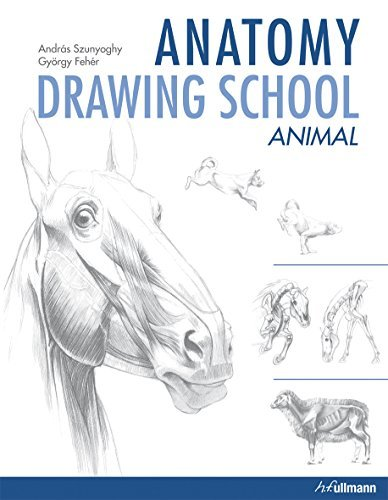 Portada del libro Anatomy Drawing School: Animal Anatomy by Andras Szunyoghy (2011-05-15)