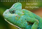 Das Leben der Reptilien (Tischkalender 2019 DIN A5 quer): Echsen, Schildköten, Schlangen aus aller Welt (Monatskalender, 14 Seiten ) (CALVENDO Tiere)