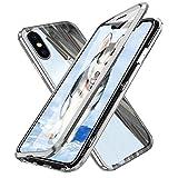 Dyluck iPhone XS Max Hülle, iPhone XS Max Magnetische Hülle, Magnetic Metallrahmen Ultra Dünn Handyhülle Transparent Tempered Glass Vor + Backcover Rückseite 360 °Ganzer Körperschutz Bumper, Silber