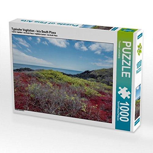 Typische Vegitation - Isla South Placa 1000 Teile Puzzle quer (CALVENDO Orte)
