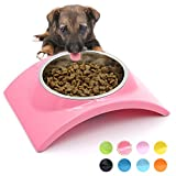 Best Dog Dishes - SuperDesign Rainbow Collection Removable Stainless Steel Bowl in Review