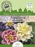 Thompson & Morgan Urban Garden Blumen Akelei Sweet Rainbows 15 Samen