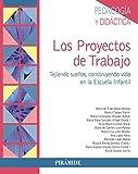 Los Proyectos de Trabajo (Psicología)