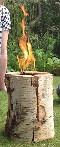large-swedish-torch-camping-birch-wood-firewood-logs-heat