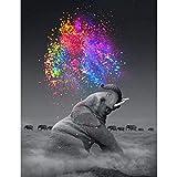 Huadingtech Pintura del Diamante De DIY 5D por El Kit del Número para El Adulto, Taladro Lleno del Bordado del Diamante Dotz Kit Decoración De La Pared Casera-15X20 Elefante