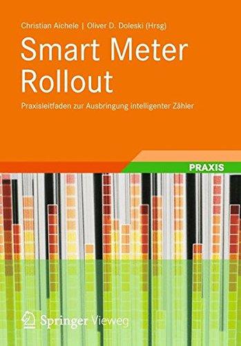 Smart Meter Rollout: Praxisleitfaden zur Ausbringung intelligenter Zähler -