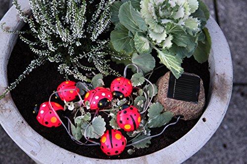 """Magisch leuchtende Solar - Lichterkette \"""" LADYBUGS \"""" mit 6 niedlichen Marienkäfern und einem Solar-Panel in Stein-Optik - dekorative Aussenbeleuchtung für Bäume, Büsche , Pflanzen , Blumentöpfe, Teich, Haus , Garten oder auch im Kinderzimmer - spritzwassergeschützt - INDOOR und OUTDOOR - mit integriertem SOLARPANEL - inkklusive AKKU - Solar - Panel - Solar Energy - mit Dämmerungssensor - Gesamtlänge inklusive Zuleitung 350 cm , für den Innen - und Aussen - Bereich geeignet - aus dem KAMACA-SHOP"""