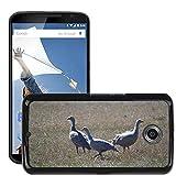 Grand Phone Cases Bild Hart Handy Schwarz Schutz Case Cover Schale Etui // M00141005 Cape Barren Gänse Gänse Tier // LG Google Nexus 6