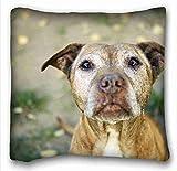 Linkla Danniol Custom Cotton & Polyester Soft (Animals Dog Pit Bull Friend) Popular 18