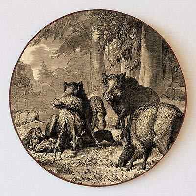 Kunstdruck Familie der Wildschweine von Deiker Jagdwild Borsten Schützenscheibe 55cm 152
