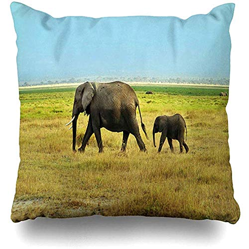 ZB Luxury Pillow Covers,Herd Green African Adult Young Elephants Walking Habitat Grass Amboseli Africa Parks Big Conservation Home Pillow Case Square Zippered Decor Pillowcase,55 * 55 cm