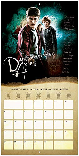 51M79qPxCZL - ERIK - Calendario de pared 2020 Harry Potter, 30 x 30 cm (incluye póster de regalo)