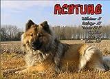 INDIGOS UG - Türschild FunSchild - SE490 DIN A4 ACHTUNG Hund Eurasier - für Käfig, Zwinger, Haustier, Tür, Tier, Aquarium - aus hochwertigem Alu-Dibond beschriftet sehr stabil