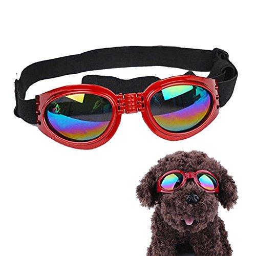 Gafas de sol para perro, protección UV, gafas plegables para mascotas, para conducción, ciclismo