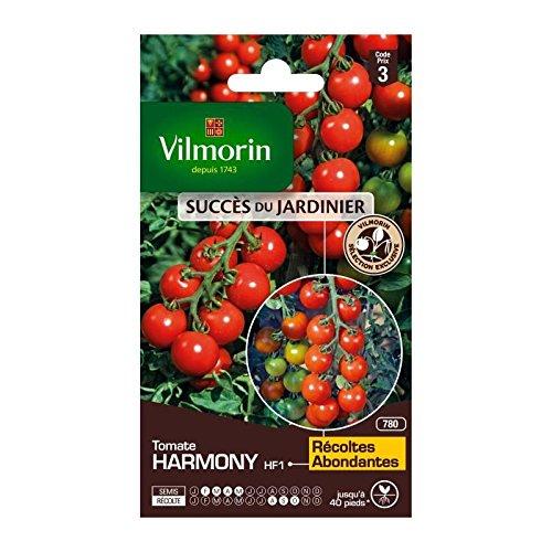 Vilmorin - Sachet graines Tomate Harmony HF1
