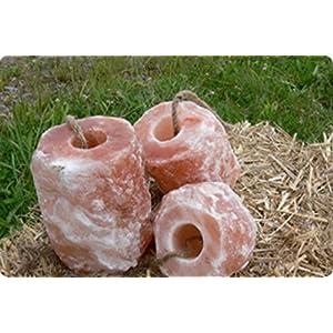6x HIMALAYA Leckstein Salzleckstein Mineralleckstein -Premiumqualität von Biova