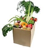 Frisches Gemischtes Obst & Gemüse