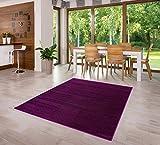 Designer Teppich Friese Einfarbig Modern Verschiedene Größen und Farben (160x230)