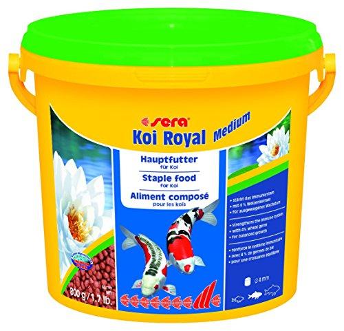 Sera 07117 KOI ROYAL MEDIUM 3800 ml - Hauptfutter für ein ausgewogenes Wachstum von Koi zwischen 12 und 25 cm