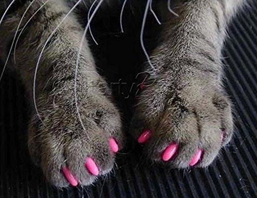 Imakar Krallenschutz für Katze, 20Stück, geliefert mit einer Tube Kleber und einem Präzisionsapplikator. Ungiftig und einfach zu verwenden. Krallenschutz für Katzen, ideale Lösung zum Schuz Ihrer Möbel - 2