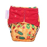#9: Superbottoms Cloth Diapers Plus Reusable All in One Diaper with 2 Organic Cotton Soakers and Dry-Feel - Footwear